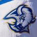 Sabres goat logo