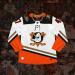 Anaheim Ducks Jersey Concept